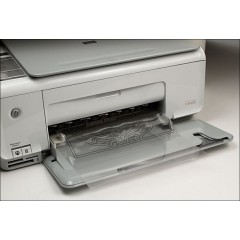 3503-00 Folie transfer printabila modelaj/sculptura pielarie.