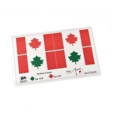 5700/08 Steag canadian, Amati
