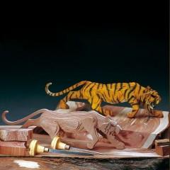 A500/02 Tigru din lemn, Amati
